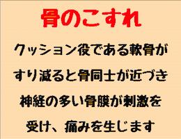honekosure260-200